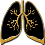 lung2